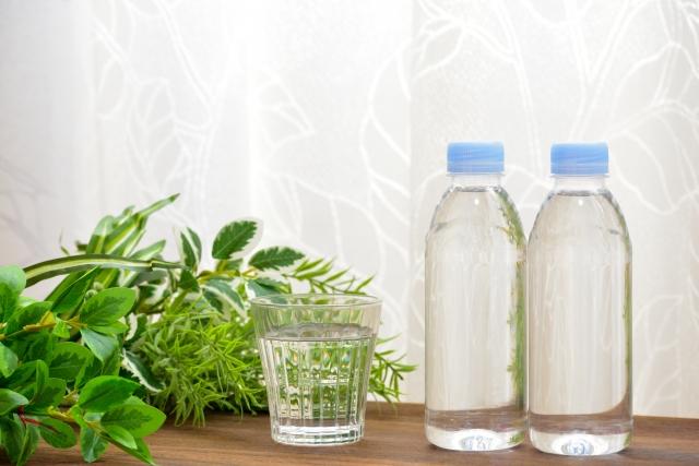 基礎代謝を上げる飲み物